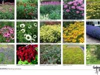 landscape designer bloomington il