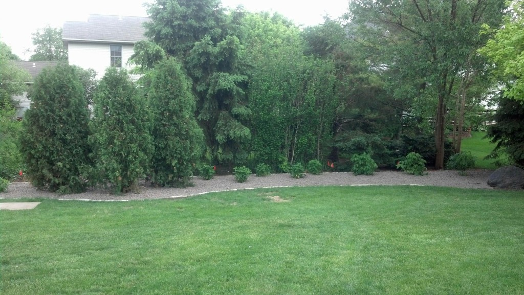 landscaping bloomington il